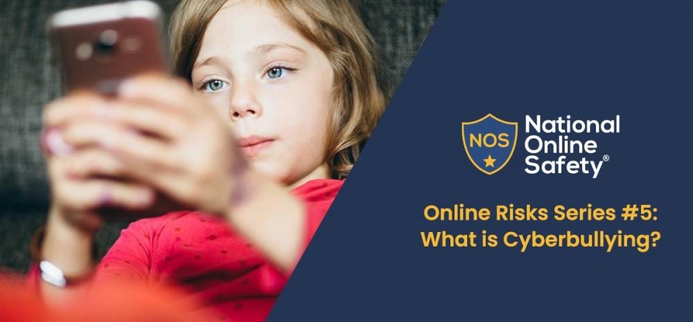 Online Risks 5