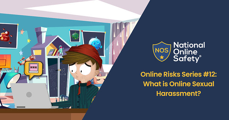 Online Risks Series 12- What is Online Sexual Harassment